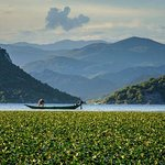 Piece of history- Cetinje, National Park Skadar lake with lunch and boat ride