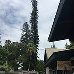 Foto de MauiWine