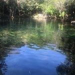 Foto de AquaSafari Mexico