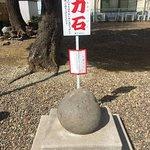 Niizo Hikawa Shrine Image