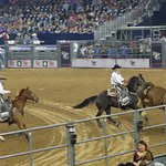 Photo of Rodeo Houston or Houston Livestock Show and Rodeo