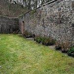 Foto de Hartland Abbey & Gardens