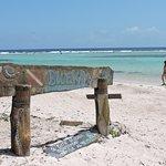 Island Marketing照片
