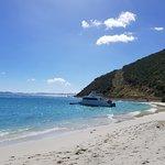 Bild från White Bay
