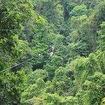Intense ziplining. Ton of fun!