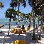 hamacas, mesas y playa