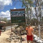 Photo of Cuzama Sinkhole Tour - Best Day Travel (Day Tour)