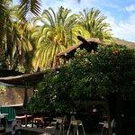 Foto de Finca Molino de Agua Hotel Rural Restaurante