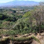 Las Penas Coffee Plantation - view from tasting