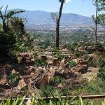 Las Penas Coffee Plantation - lookout view 2