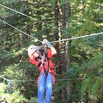 Sonoma Canopy Tours Foto