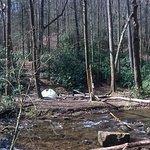 nice creekside campsites