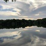Foto de Buescher State Park