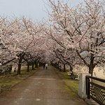 Photo of Botanic Gardens of Toyama