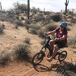 Journey Arizona Tours照片