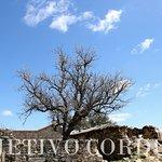 La aldea de El Cerezo vivió su esplendor a mediados del siglo XX cuando estaba habitada por un c