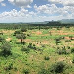 The view from our room in Tsavo East