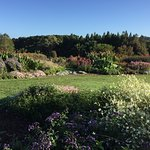 Photo of Auckland Botanic Gardens