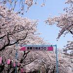 ภาพถ่ายของ Kaizogawa Riverbank