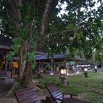 Nam at Bon Ton