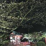 Foto de Mobara Park