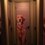 Foto White Dog Cafe