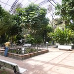 Interior of Palm House