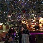 Tree growing through restaurant.