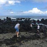 Volcanic rock at sea level
