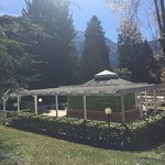 Photo of Il Parco Secolare degli Asburgo