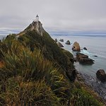 Nugget Point on an overcast morning.
