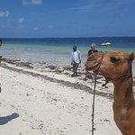 Photo of Bamburi Beach