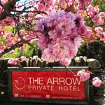 Arriving at The Arrow