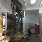 Фотография Геологический музей