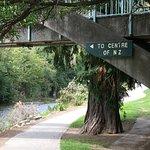 Photo de Trail Journeys Nelson
