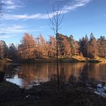 Amazing, beautiful walk around tarn how's