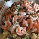 Look at those shrimp!