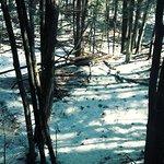 Photo de Petoskey State Park