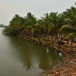backwaters near the paradise beach