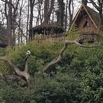 Photo of Zoo de La Fleche