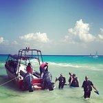 Photo of Pro Dive Mexico