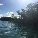 Photo de Key West Eco Tours