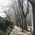 Foto de Parque de la Dehesa (Parc de la Devesa)