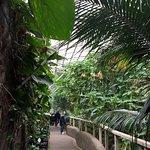 Foto de Tropical World