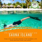 The Best Private Dominican Republic Snorkeling Excursion at Saona Islands. Private Boat