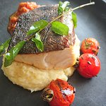 Market fish which was kingfish with parsnip puree and chutney