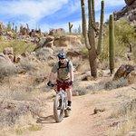 """FAT BIKE TOUR"" in the Sonoran Desert with Sonoran Outdoor Adventures!"