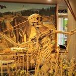 Foto Utah State University Eastern Prehistoric Museum