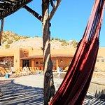 Main pool from shaded area with hammocks