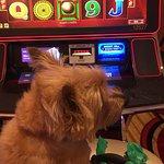 Visiting Vegas
